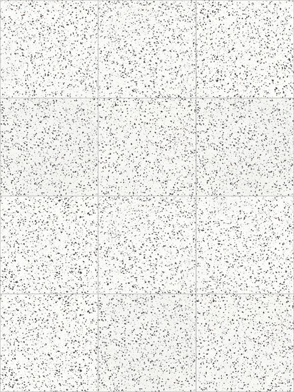 TERRAZZO WHITE BLACK_US7933